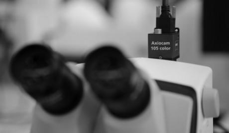 Mikroskope u op mikroskope dr wilfried müller gmbh